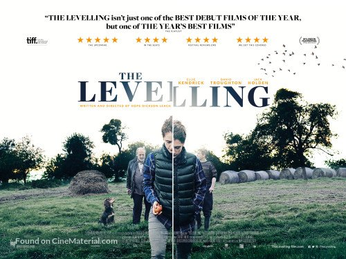 STEPHEN CHAPMAN / THE LEVELLING