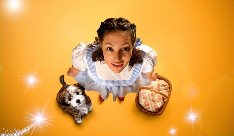 Lorna Laidlaw / The Wizard of Oz